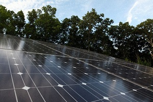 Solar panel study shows it's OK to be a copycat